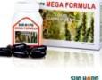 Mega Formula Sun Hope